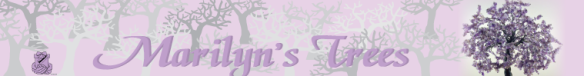Banner for Marilyn's Trees